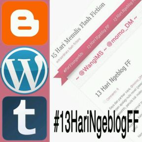 logo 13haringeblogff
