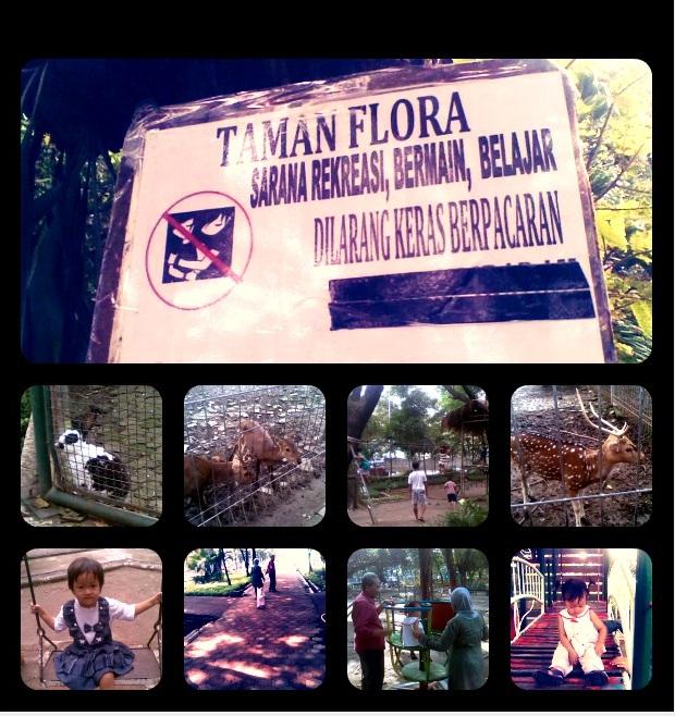 Kebun Bibit 1 - Taman Flora - Ngagel jaya*doc. rinibee